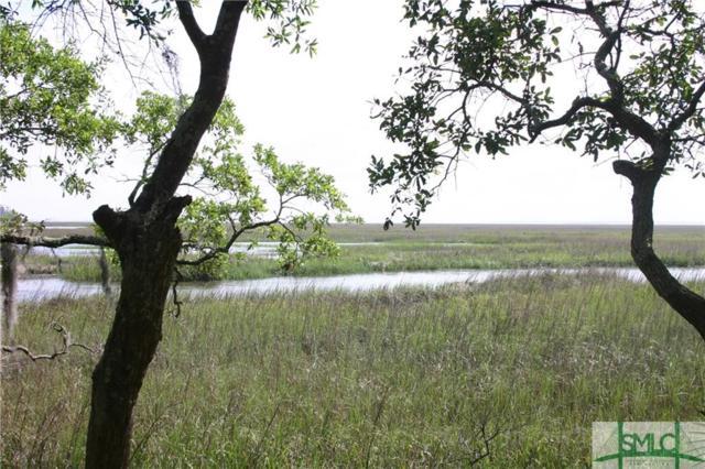 115 Seven Mile View, Savannah, GA 31411 (MLS #190615) :: Karyn Thomas