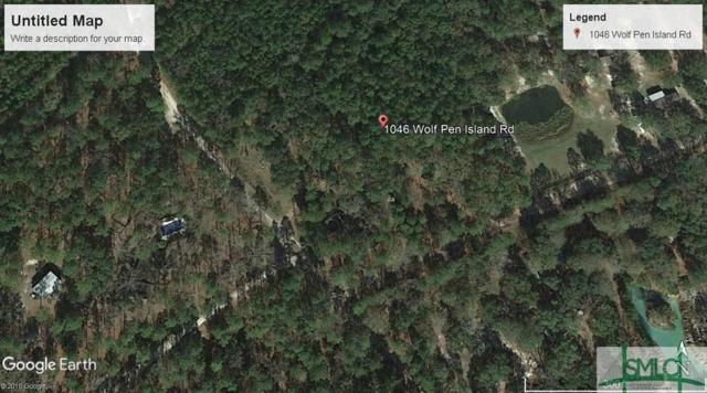 1046 Wolf Pen Island Road, Ellabell, GA 31308 (MLS #193735) :: The Sheila Doney Team