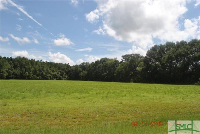 0 Rivercrest Drive, Brooklet, GA 30415 (MLS #194853) :: The Arlow Real Estate Group