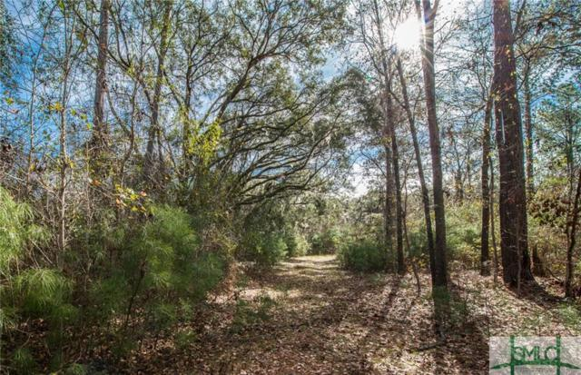 1400 Canal Bank Court, Pooler, GA 31322 (MLS #196698) :: The Arlow Real Estate Group