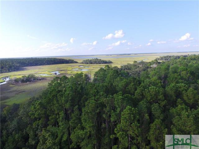 Lot 4 Eagle Neck Drive, Townsend, GA 31331 (MLS #198126) :: The Arlow Real Estate Group