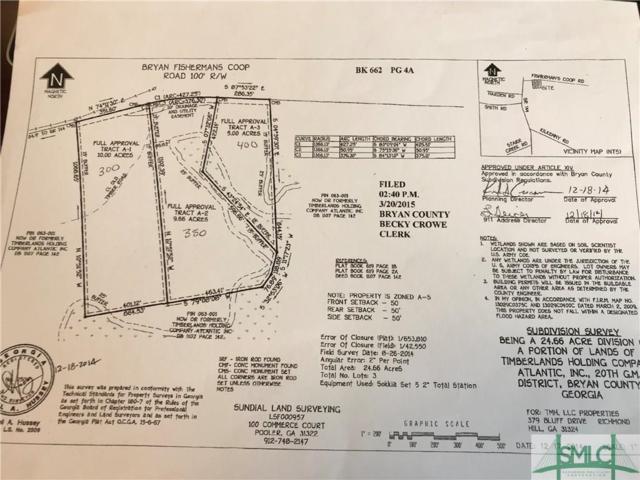 300 Bryan Fishermans Coop Road, Richmond Hill, GA 31324 (MLS #199046) :: Karyn Thomas
