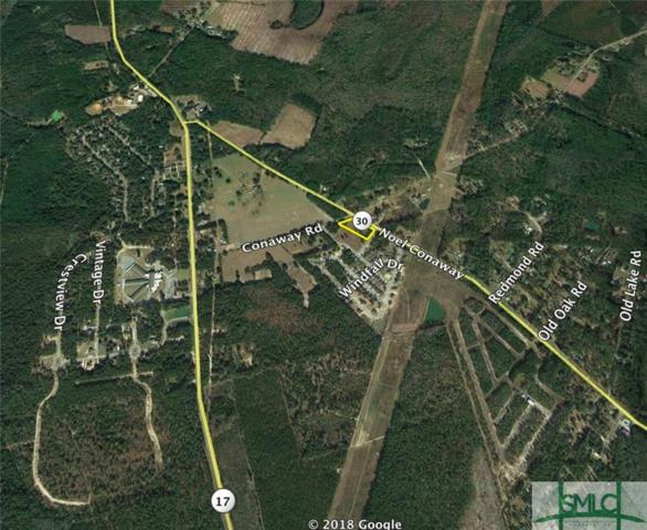 490 Noel C Conaway Road, Guyton, GA 31312 (MLS #199138) :: Coastal Savannah Homes