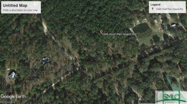 1046 Wolf Pen Island Road, Ellabell, GA 31308 (MLS #199772) :: The Sheila Doney Team