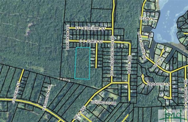 0 Cc Jones Street, Midway, GA 31320 (MLS #200372) :: The Randy Bocook Real Estate Team