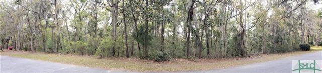 14 Eagle Ridge Drive, Savannah, GA 31406 (MLS #202975) :: Karyn Thomas