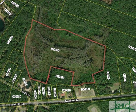 29.47 ACres Trade Hill Road, Midway, GA 31320 (MLS #209983) :: Teresa Cowart Team