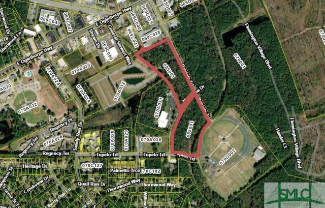 0 Patriots Trail, Hinesville, GA 31313 (MLS #210134) :: Teresa Cowart Team
