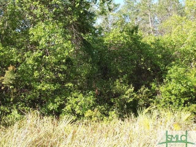 10 Main Trail, Midway, GA 31320 (MLS #216404) :: Teresa Cowart Team