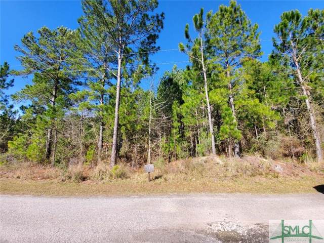 0 Main Trail, Midway, GA 31320 (MLS #218907) :: Partin Real Estate Team at Better Homes and Gardens Real Estate Legacy