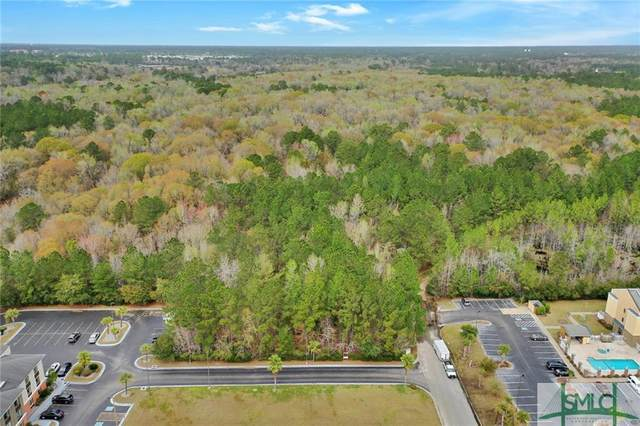 1388 E Oglethorpe Highway, Hinesville, GA 31313 (MLS #222030) :: The Sheila Doney Team