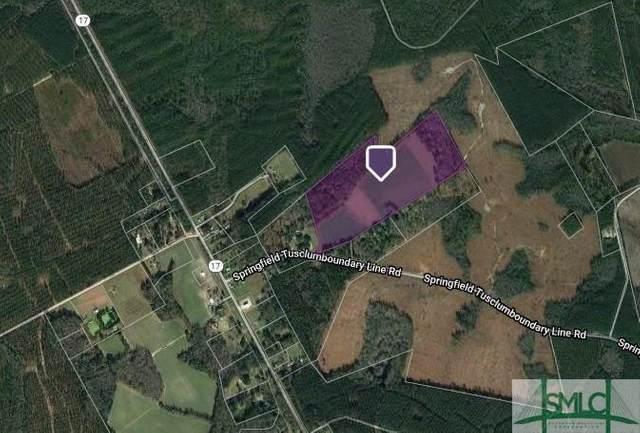 2000 Springfield Tusculum Road, Guyton, GA 31312 (MLS #228782) :: The Sheila Doney Team