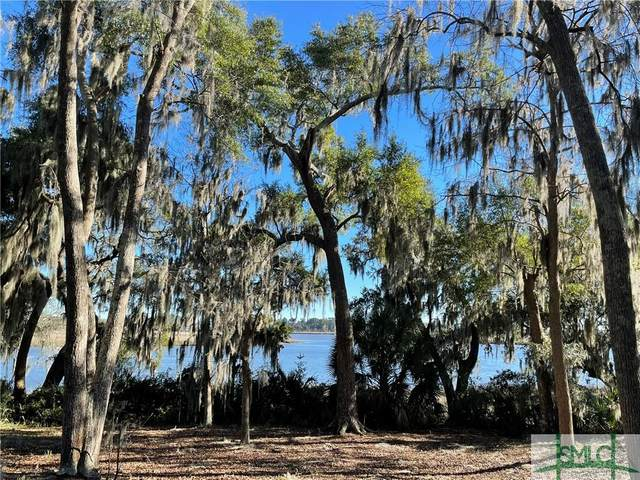 33 Bartow Point Drive, Savannah, GA 31404 (MLS #243909) :: Team Kristin Brown | Keller Williams Coastal Area Partners