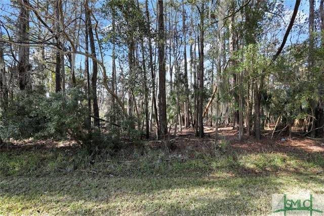 6 Meriweather Drive, Savannah, GA 31406 (MLS #244187) :: McIntosh Realty Team