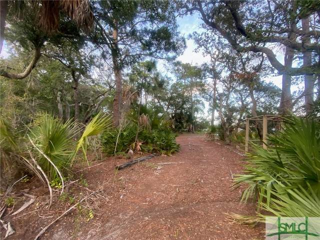 204 Catalina Drive, Tybee Island, GA 31328 (MLS #245663) :: The Arlow Real Estate Group