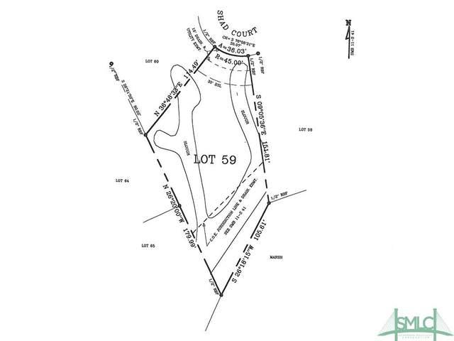 5 Shad Court, Savannah, GA 31410 (MLS #253512) :: The Allen Real Estate Group