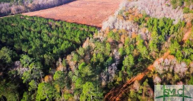 101 /Lt 4 Groover Road, Ludowici, GA 31316 (MLS #257553) :: The Arlow Real Estate Group