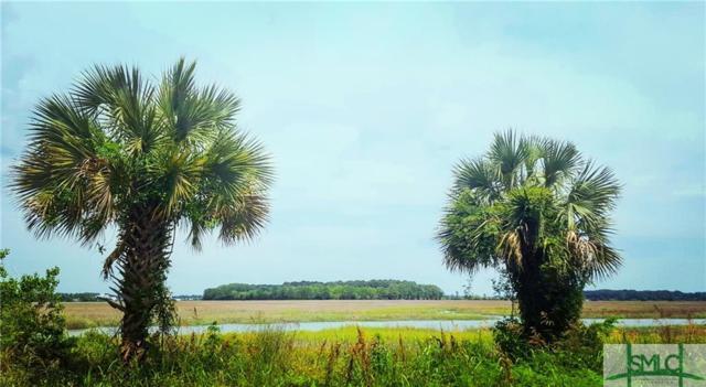133 Bluffside Circle, Savannah, GA 31404 (MLS #166370) :: The Sheila Doney Team