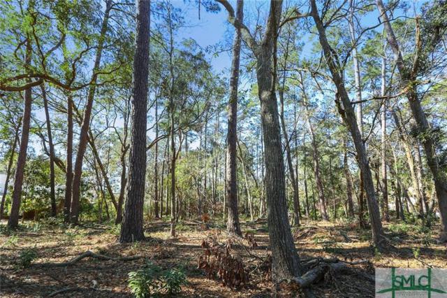 5 Hibernia Road, Savannah, GA 31411 (MLS #186552) :: The Robin Boaen Group
