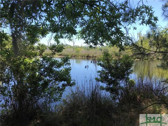 156 Enclave Boulevard, Savannah, GA 31419 (MLS #189392) :: The Robin Boaen Group