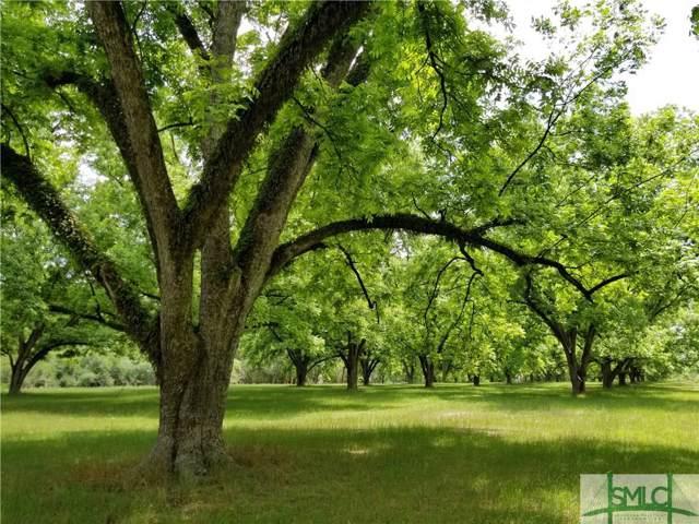 1309 Cliponreka Road, Statesboro, GA 30461 (MLS #217814) :: The Arlow Real Estate Group