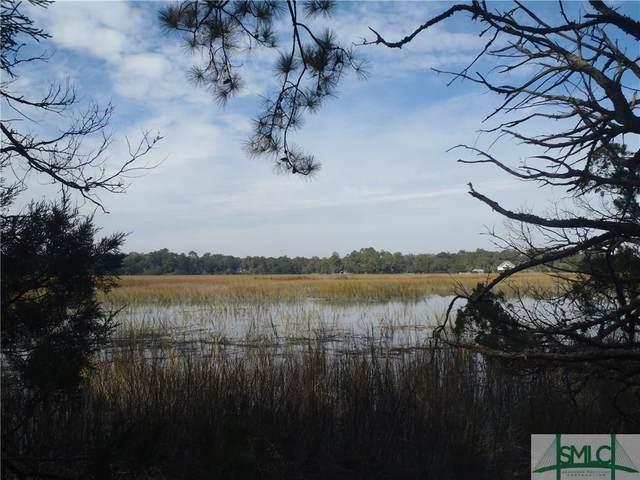55 Mission Drive, Darien, GA 31305 (MLS #168017) :: Keller Williams Coastal Area Partners