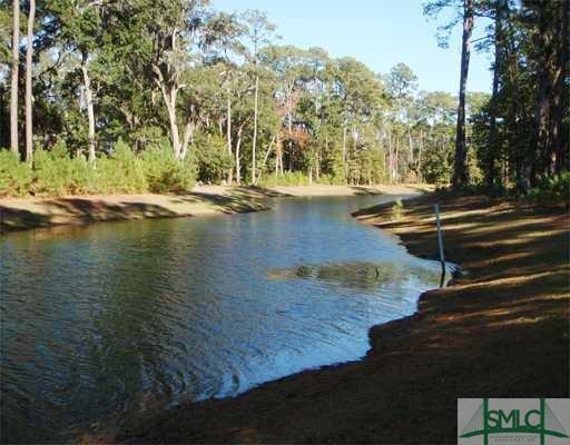 69 Waterway Drive, Savannah, GA 31411 (MLS #175715) :: The Arlow Real Estate Group