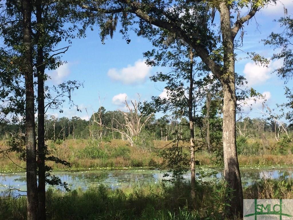 125 Trail Creek Lane - Photo 1