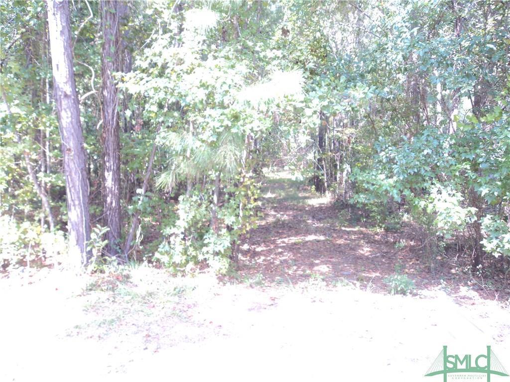 103 Red Bluff Run - Photo 1