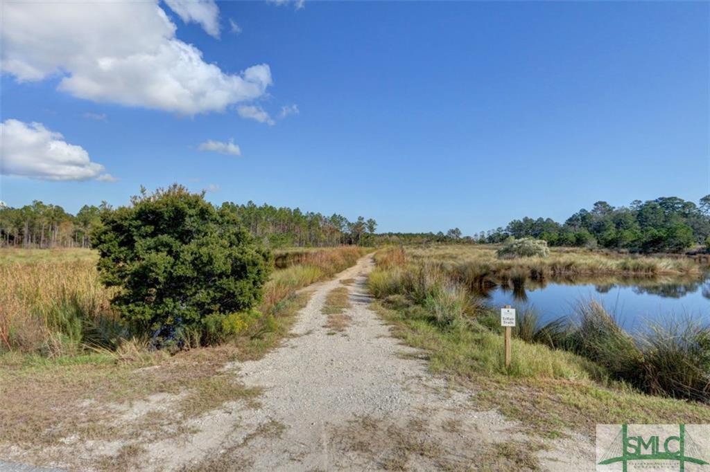LOT 68 Telfair Plantation Drive - Photo 1
