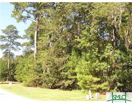 151 Trail Creek Lane, Savannah, GA 31405 (MLS #192695) :: McIntosh Realty Team
