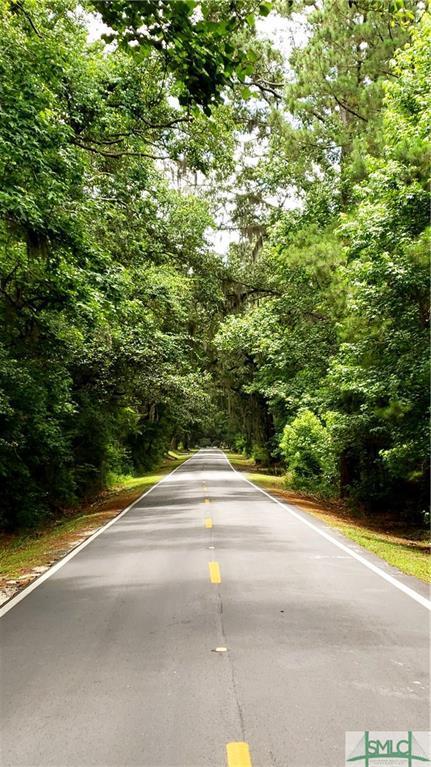 108 Drifton Drive, Savannah, GA 31419 (MLS #192844) :: McIntosh Realty Team