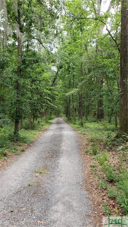 116 Drifton Drive, Savannah, GA 31419 (MLS #193106) :: McIntosh Realty Team
