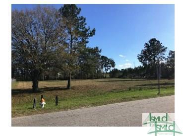 3 & 4 Longwood Drive, Richmond Hill, GA 31324 (MLS #196534) :: The Arlow Real Estate Group