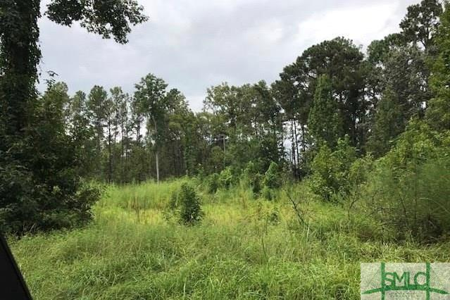 0 Mill Hill Road, Richmond Hill, GA 31324 (MLS #196996) :: The Arlow Real Estate Group