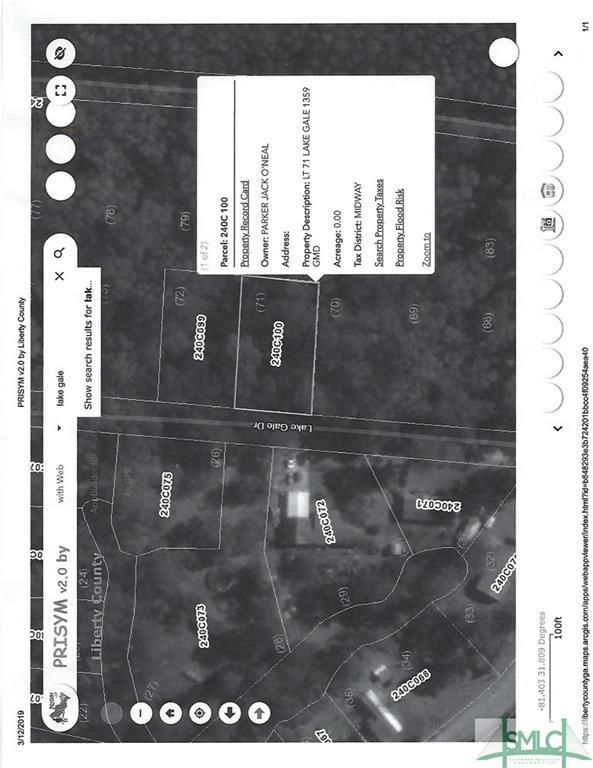 0 Lake Gale Drive, Midway, GA 31320 (MLS #203869) :: Teresa Cowart Team
