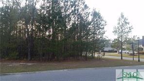 119 Enclave Boulevard, Savannah, GA 31419 (MLS #205296) :: The Randy Bocook Real Estate Team