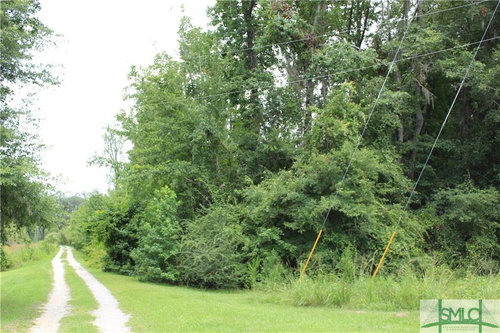 0 Oglethorpe Highway - Photo 1