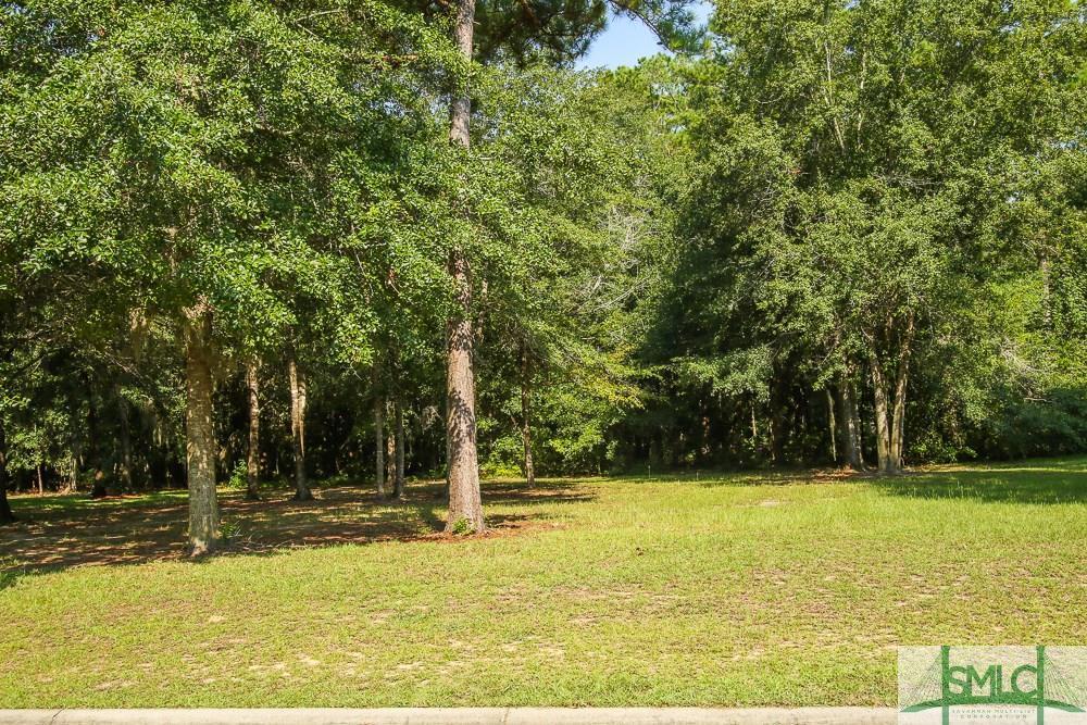 45 Sanctuary Drive - Photo 1