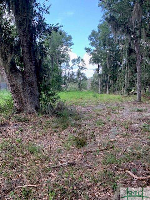 Lot 10 Kings Road, Midway, GA 31320 (MLS #212501) :: The Sheila Doney Team