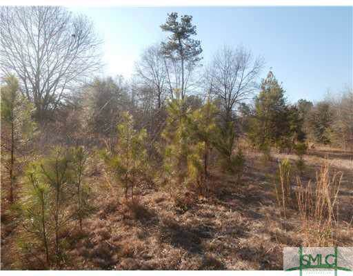 0 Windy Oaks (Lot 22) Court, Midway, GA 31320 (MLS #212769) :: RE/MAX All American Realty