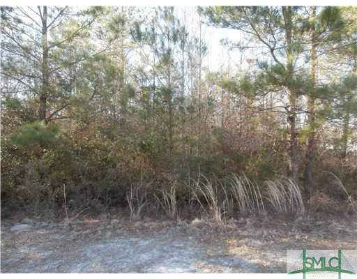 0 Windy Oaks (Lot 23) Court, Midway, GA 31320 (MLS #212771) :: Keller Williams Coastal Area Partners