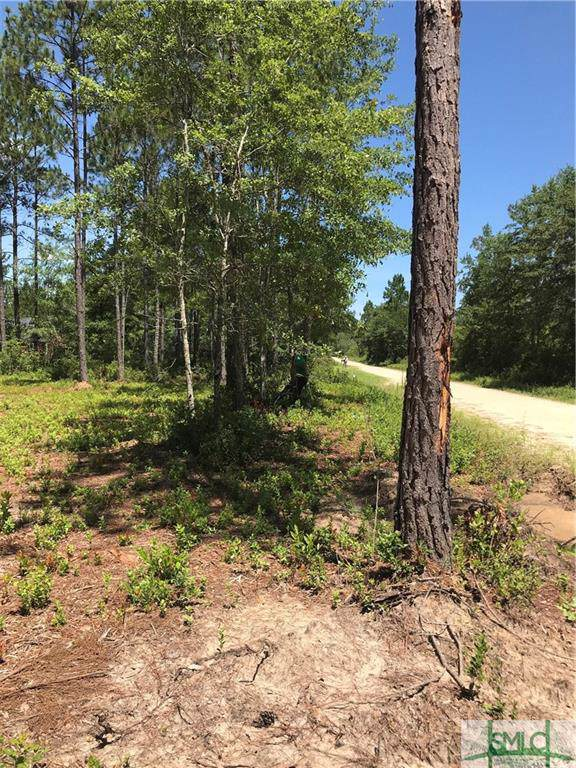 1101 Old Dixie Highway S, Newington, GA 30446 (MLS #215198) :: Partin Real Estate Team at Better Homes and Gardens Real Estate Legacy