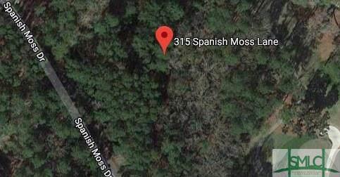 315 Spanish Moss Lane - Photo 1