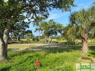 211 5th Avenue, Tybee Island, GA 31328 (MLS #231377) :: Liza DiMarco