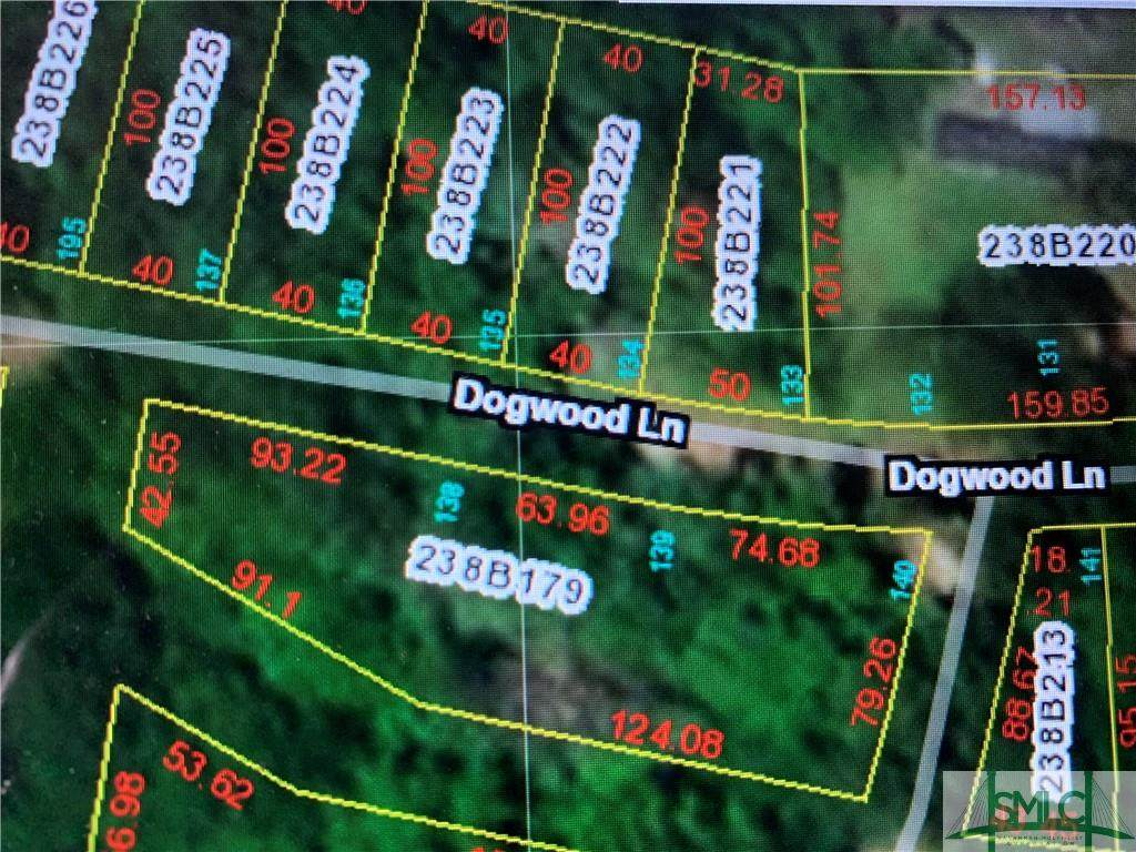 610 Dogwood Lane - Photo 1