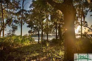6 Spring Marsh Circle, Savannah, GA 31411 (MLS #246505) :: The Arlow Real Estate Group