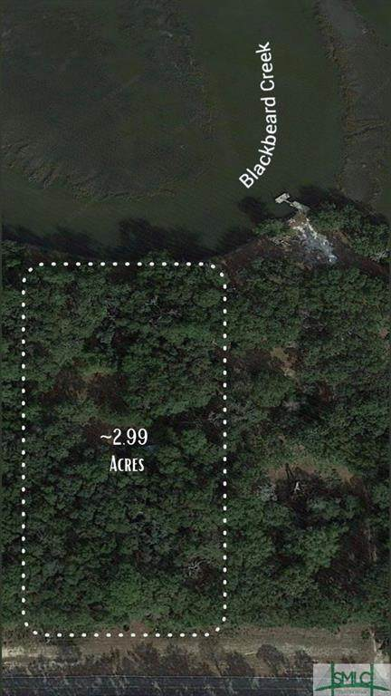 2.99 AC Islands Highway, Midway, GA 31320 (MLS #248561) :: The Hilliard Group