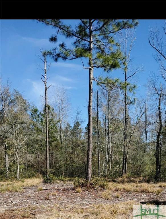 850 Mt Hope Road, Guyton, GA 31312 (MLS #251386) :: Keller Williams Coastal Area Partners