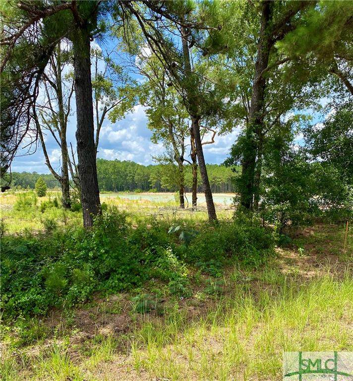 1063 Old Olive Branch (Lot C) Road - Photo 1